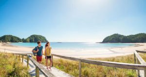 Northland Matapouri New Zealand tours beaches luxury travel private guided tour operator small group tours day trips honeymoon newzealand best tours holiday experience auckland