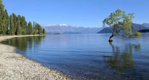 Wanaka selfdrive holiday tour lake wanaka new zealand tours operator inbound agent agency travel specialist booking special best offers new zealand