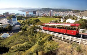 Wellington tours cable car self drive new zealand tour operator day trips special honeymoon tour guides sightseeing newzealand specialist travel holiday offer small