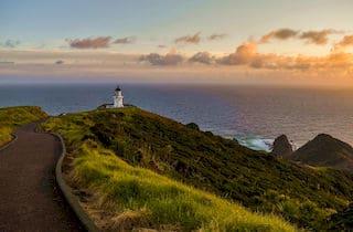 5 Beste Auckland Tagestouren | Urlaub Neuseeland deutsch