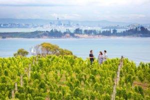Auckland-WaihekeIsland neew zealand self drive tours wine food selfdrive auckland day trips Destination-Management