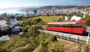 Wellington new zealand holiday experience self drive tour new zealand nature tours