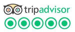 tripadvisor best auckland day tour guide auckland shore excursion best day trips