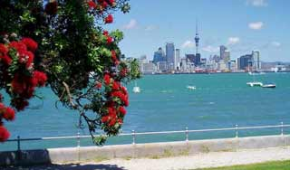ew zealand holidays auckland day trips self drive tours new zealand private tour airport transfer auckland trips