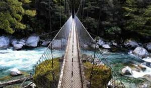 new zealand nature tour hikes self drive tours hiking day walk tour guides small groups