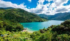 new zealand self drive tour marlborough abel tasman south island tour holidays