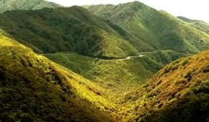new zealand self drive tours north island remutaka ranges wellington holiday