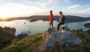 new zealand trips bay of islands self drive tours private tour guides small group dmc hikes
