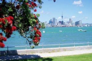 Auckland-tagestouren-city-trips-devonport-strand-skyline-pohutokawa-neuseelandspezialist-deutschsprachig-auckland_320x240.jpg