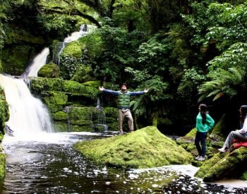 Catlins McLean Falls new zealand deals self drive tours specialist nature tour guides auckland excursion