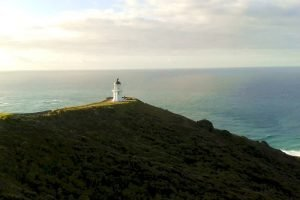 cape-reinga-newzealand-selfdrive-tours-holidays-booking-honeymoon